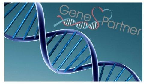geneticaypareja