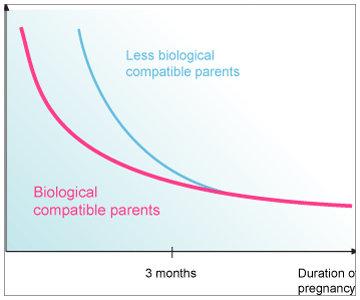 geneticaypareja2